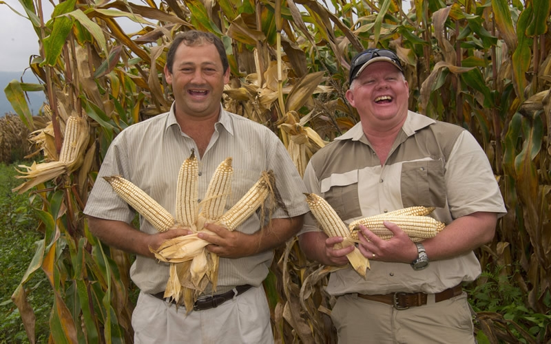 Maize Growers