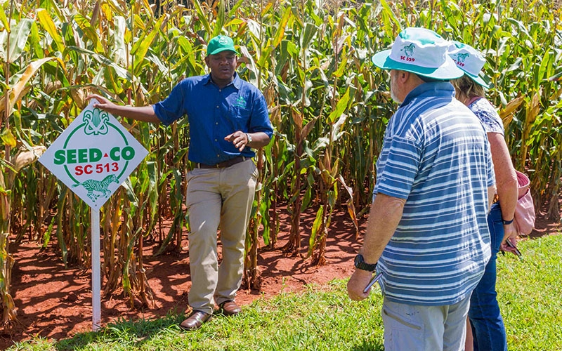Annual Commercial Field Day at Rattrey Arnold Research Station