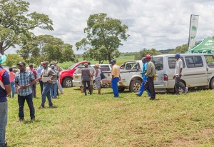 Field Day at Kuda Kudenga Farm